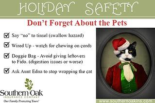 home safety pet safety